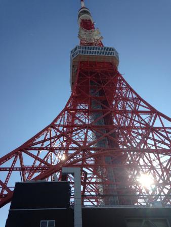 The tower - Picture of Tokyo Tower, Minato - TripAdvisor