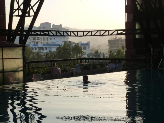 The Orchid Pune: Foolhardy swimmer takes chances with bird droppings