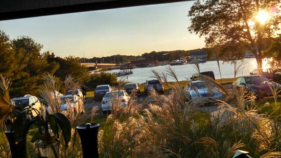 Harpoon Willy's: View of the River