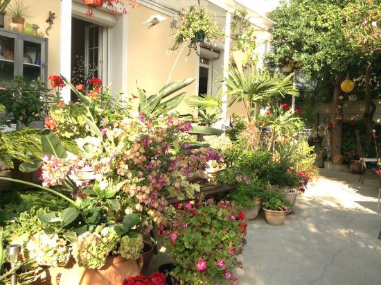 Hotel Victorine : Terrasse et jardin