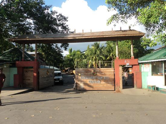 Chatham Saw Mill: Entrance