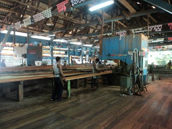 Chatham Saw Mill: Inside activity