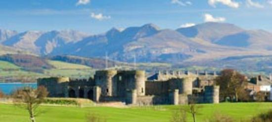 Snowdonia Mountain Lodge: Local castle with mountains