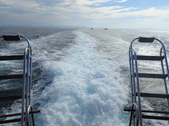 Sea Bees Diving Khao Lak - Day Tours : on the boat