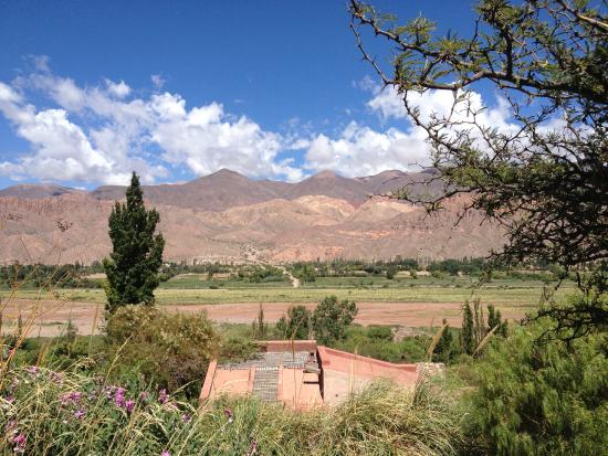 Cerro Chico: The morning view from the rooms