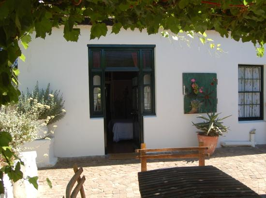 Aan De Doorns Guest House: From the room straight out under the vines