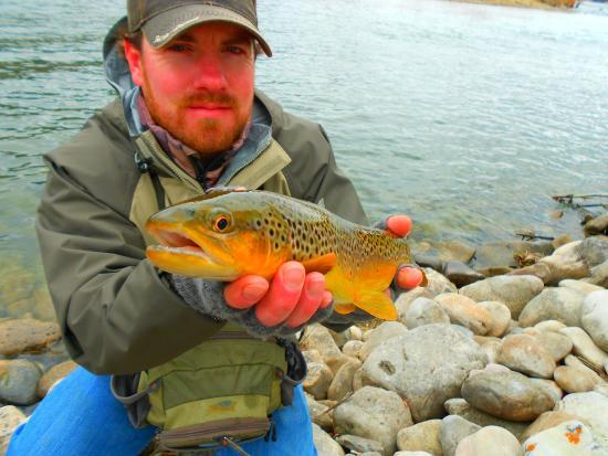 Thayne, WY: Snake River