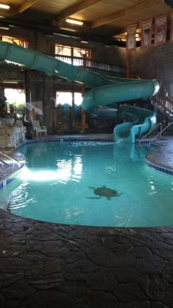 Riverchase Motel: The indoor pool and waterslide