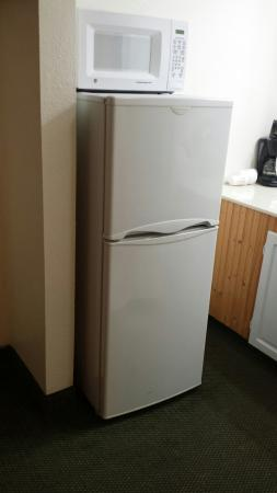 Riverchase Motel: Fridge and freezer in queen room
