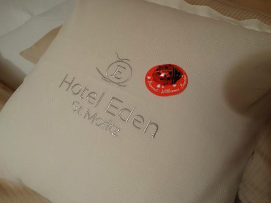 Hotel Eden Garni St. Moritz: Amenidades