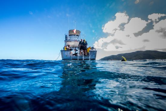 North Sound, Virgin Gorda: The Sunchaser dive boat