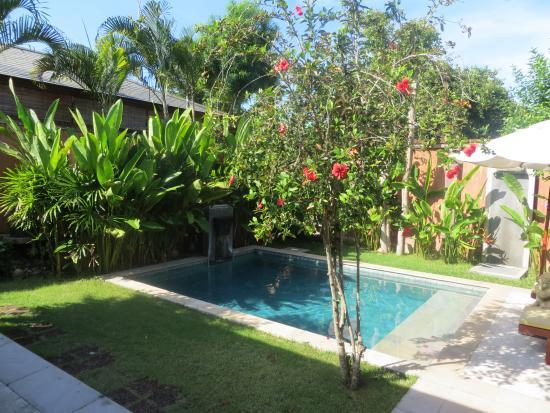 Alanta Villa: exterior/piscina