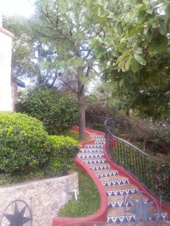 Casa Estrella de la Valenciana: back yard
