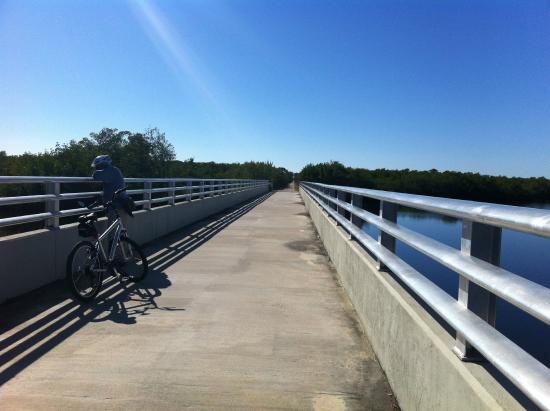 Cape Haze Pioneer Trail Park: Bridge
