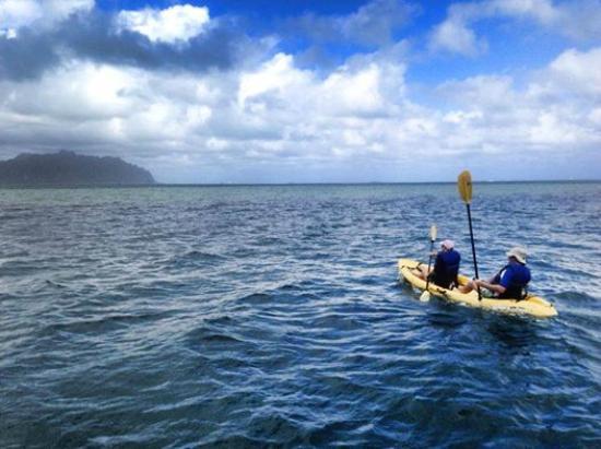 Holokai Kayak and Snorkel Adventure : kayaking on Kaneohe Bay