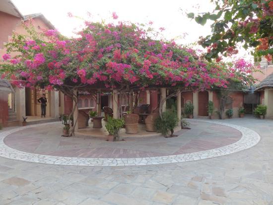 Apani Dhani Eco-Lodge : outdoor seating area