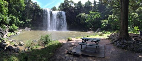 Whangarei, New Zealand: Worth the walk to the bottom of the Falls.