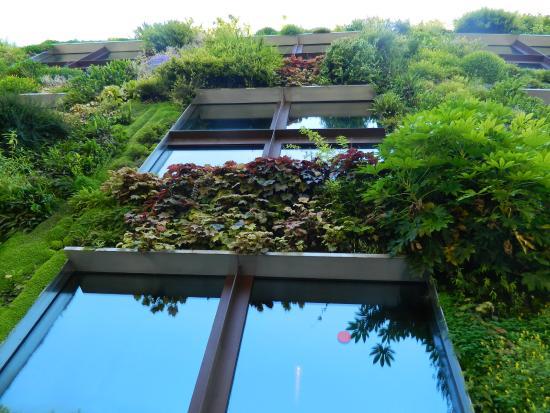 Jardín vertical entre ventanales - Photo de Musée du quai Branly ...