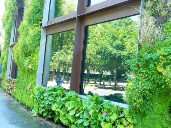 Entrada espejada con jardín vertical - Foto de Musee du quai Branly ...