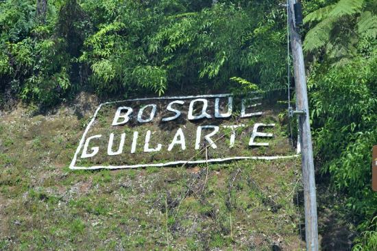 Adjuntas, Puerto Rico: Aquí hay que doblar a la izquierda
