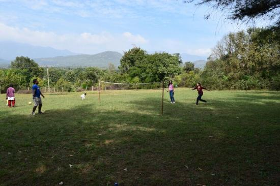 Scenic Acres Homestay: Playground