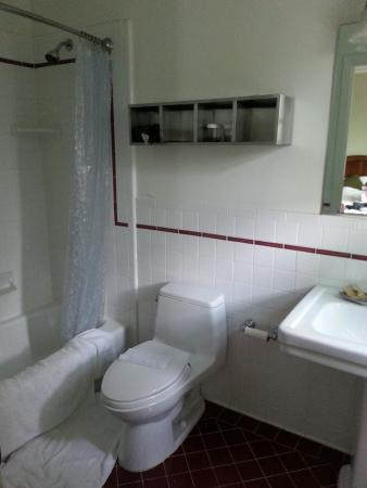 Parker Guest House : Roomy bathroom
