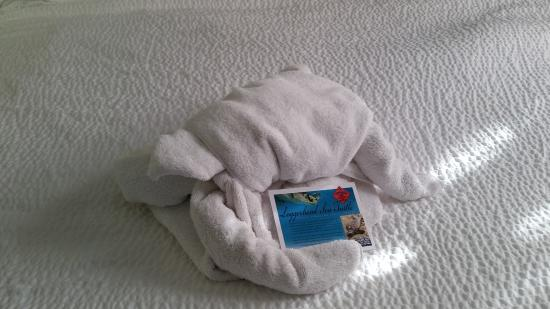 Residence Inn Charleston Downtown/Riverview : Loggerhead turtle on bed.