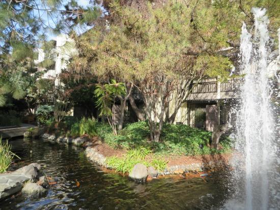 Sheraton Palo Alto Hotel : Natural Area
