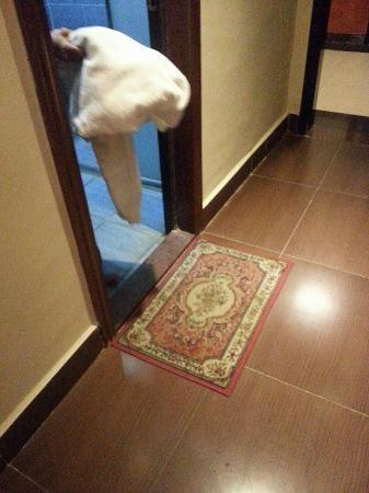 Heping County, China: 用白色毛巾抺厠所給我影了