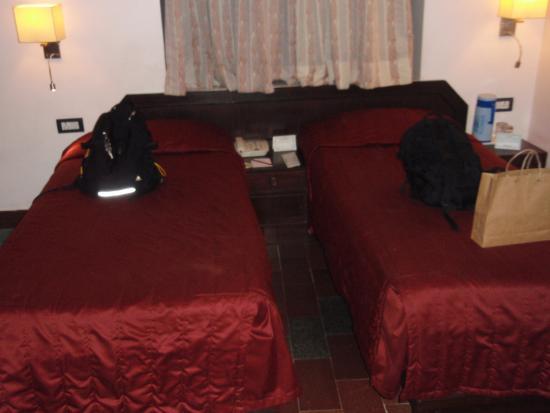 Hotel Maharani Plaza: 客室