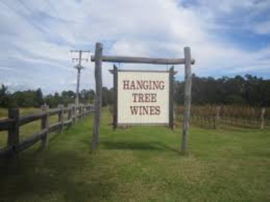 Hanging Tree Wines : Old Sign seen from the road