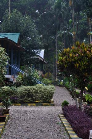 Aranya Jungle Resort: In the resort