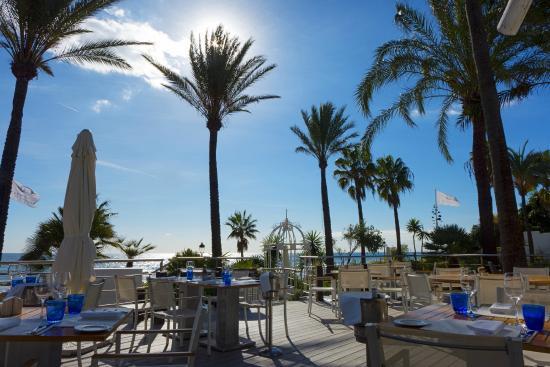 Central 39 square 39 with restaurants bars and roman bridge - Sea grill marbella ...