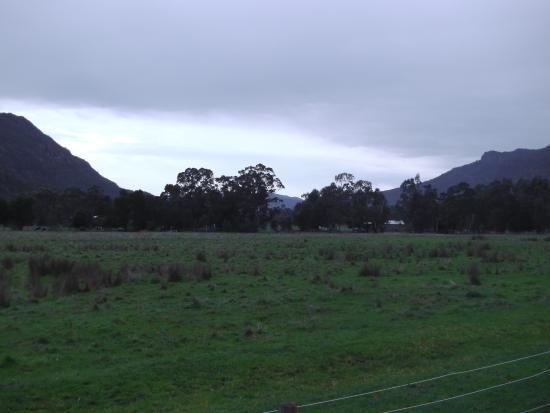 Kookaburra Motor Lodge : View from room