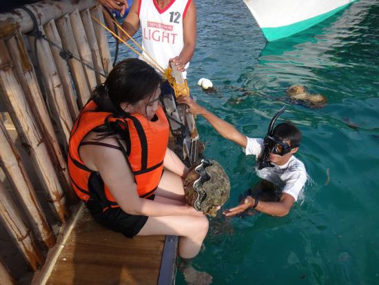 Samal Island, Filippinene: Hands On