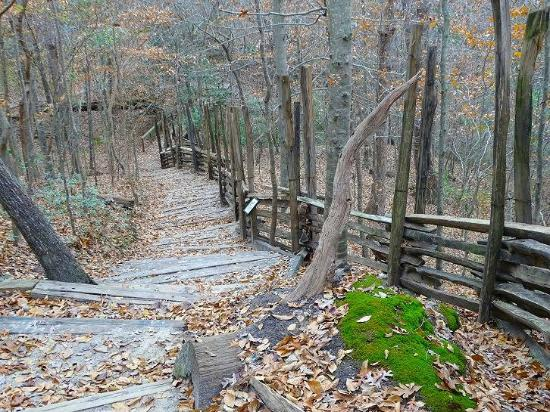 Goldsboro, Carolina del Nord: trail