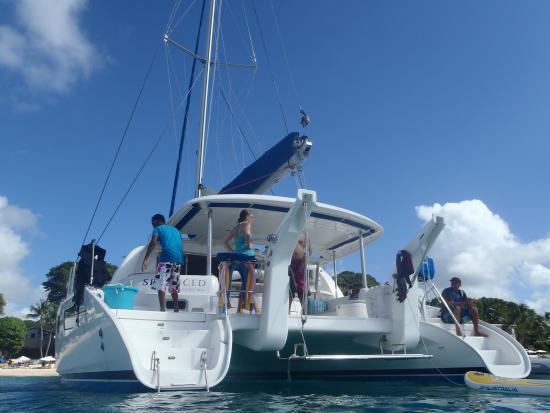 Seaduced Luxury Catamaran: The boat