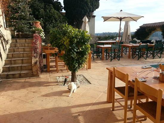 Restaurant garden picture of le jardin du mas biot for Cafe du jardin london