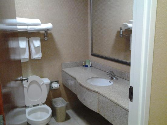 Best Western Gwinnett Center Hotel: beautiful granite counter tops and renovated tubs!