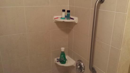 Residence Inn Madison West/Middleton: Shower shelves