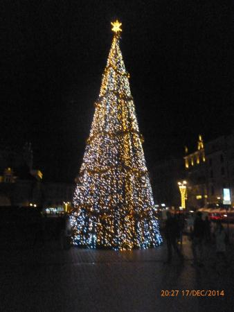 The Massive Christmas tree in the Square - Picture of Main Market ...