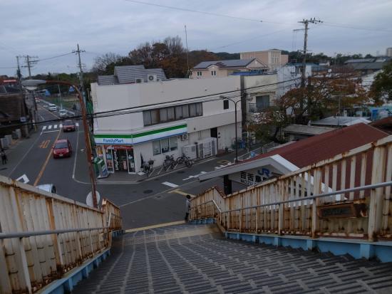 Daisenryo Ancient Tomb: JR百舌鳥駅横の歩道橋から見た陵