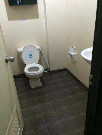 Hotel Ramaz: Душевая-туалет