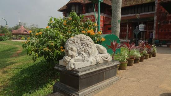 Napier Museum: Лев устал