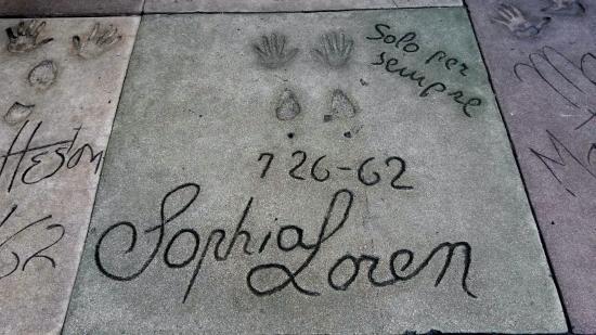 Days Inn Hollywood Near Universal Studios: Walk of Fame