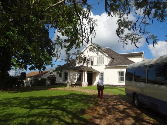 Yaaman Adventure Park: Prospect Plantation House