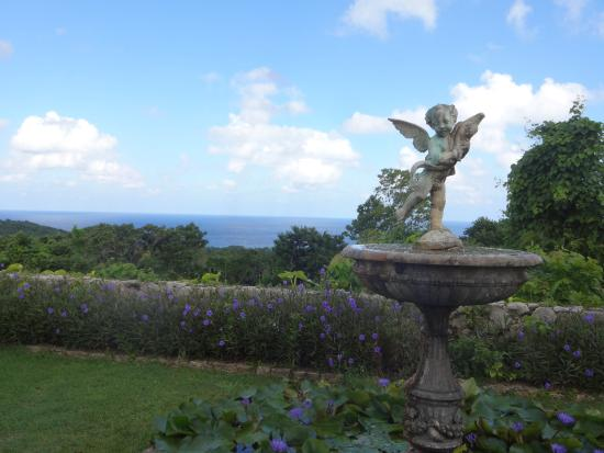 Yaaman Adventure Park: View from back garden