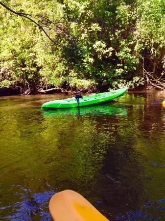 Quenuir Nature & Adventure: Rio Quenuir