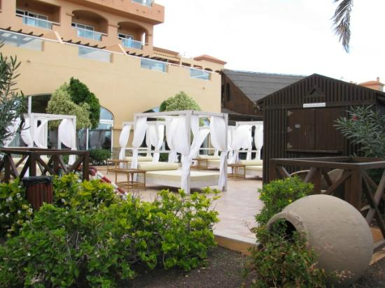 Hotel Elba Sara : Special sun beds for hire at E5 a day