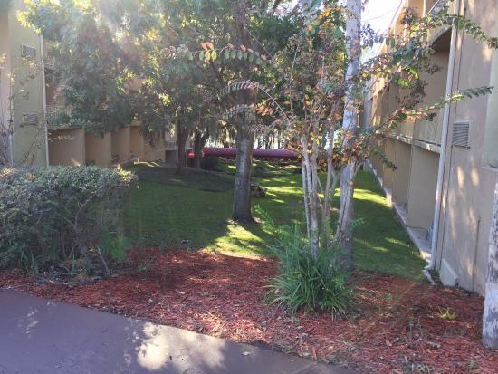 Exterior View Picture Of Wyndham Garden Gainesville Gainesville Tripadvisor